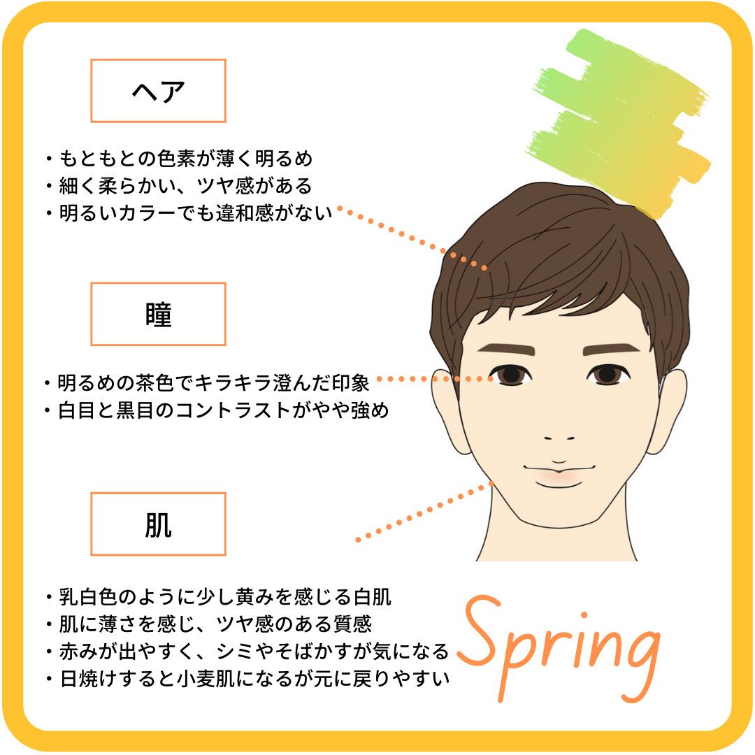 パーソナルカラー メンズ スプリングタイプ 特徴